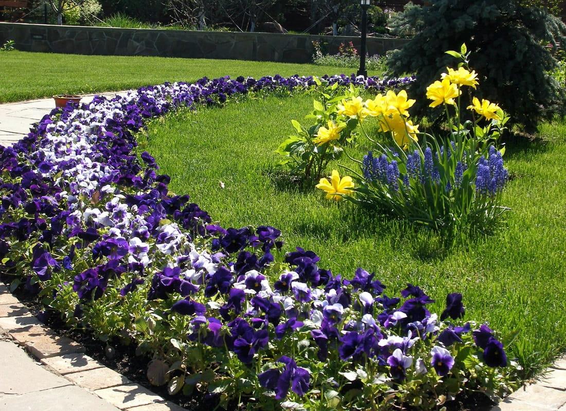 Виды цветников - рабатка