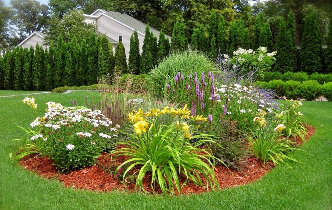 Группа цветов в саду