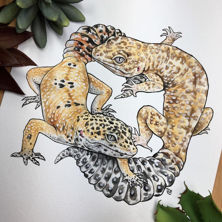 gecko рисунок «width =» 1080 «height =» 1080