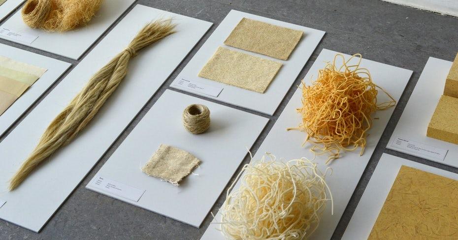биоразлагаемые упаковочные материалы на основе растений