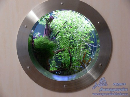 дизайн аквариума планировка оформление аквариума