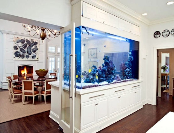 Аквариум в интерьере – идеи для вашей квартиры
