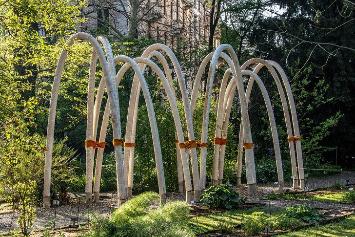 Круглый сад 04