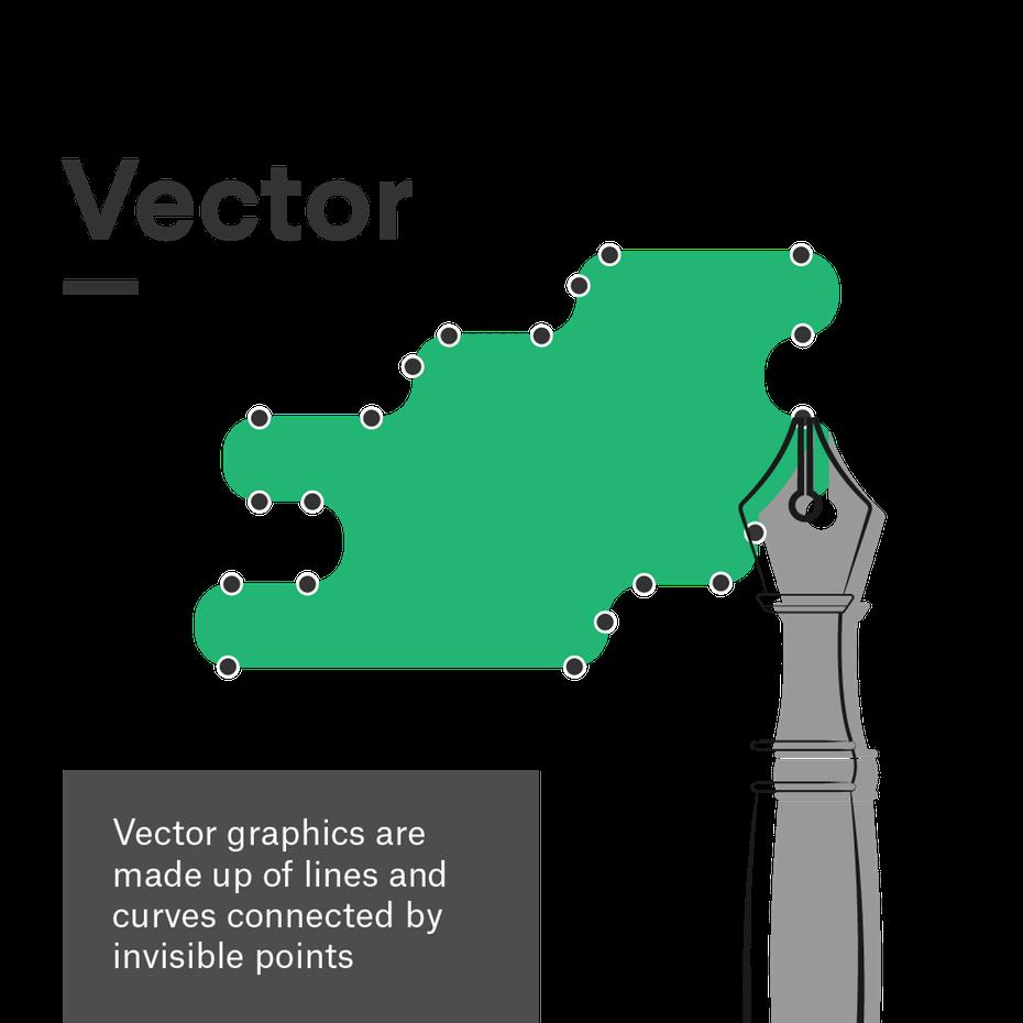 Графическое представление векторного формата