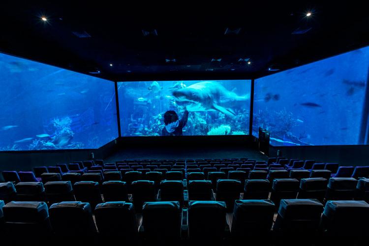 """Экран в кинотеатре Reels в торговом центре Dubai Mall, предоставлен Chapman Taylor """"width ="""" 750 """"height ="""" 500 """"/>    <figcaption> Экран в кинотеатре Reels в торговом центре Dubai, предоставлен Chapman Taylor </figcaption></figure> <h2><span id="""