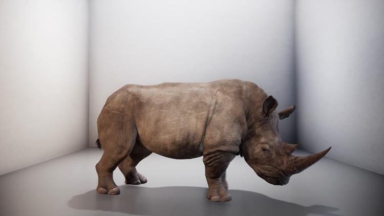 """rhino-reszied """"width ="""" 750 """"height ="""" 422 """"/>    <figcaption> Замена (2019), Александра Дейзи Гинсберг. Предоставлено Гинзбергом. </figcaption></figure> <p> Посетители будут быть в состоянии видеть виртуального носорога, который будет перемещаться через смотровое окно с эффектом погружения, как в музее естествознания. </p> <p> «Мы можем воссоздать в цифровом виде вид, который потерян из-за нас», — говорит Деликадо. «Но значит ли это, что только потому, что мы можем это сделать, мы не должны заботиться о других видах, находящихся сейчас под угрозой исчезновения?» </p> <p> «Он задает вопрос, спасут ли нас технологии или нет», — добавляет он. </p> <p> Цель выставки — заставить посетителей пересмотреть этот тип принятого мышления. «Иногда технология может быть использована в качестве« липкой штукатурки »для решения проблемы», — говорит Деликадо. «Мы хотим, чтобы выставка помогла людям понять всю проблему, а затем найти решение». </p> <p> Еще один проект на тему животных от коллектива художников Rimini Protokoll принимает форму инсталляции из живых медуз — одного из немногих видов, которые действительно выигрывают от глобального потепления. Мало того, что они предпочитают более теплые морские температуры, их хищники — черепахи — уменьшаются из-за пластического кризиса. </p> <hr/> <h2> Широкий спектр дизайна </h2> <p> Дизайн выставки очень широк. Одним из элементов дизайна является наклонный бронзовый стул от Вирджила Аблоха, который недавно сотрудничал с IKEA. Стул, являющийся частью коллекции Acqua Alta, преднамеренно неудобен из-за его уклона. Деликадо говорит, что это комментарий о повышении уровня моря. </p> <p> «Он задается вопросом, как наши ежедневные привычки потребления оказывают огромное влияние на окружающую среду», — говорит Деликадо. «Каким бы ни был объект, он заставляет нас переосмыслить свои привычки потребления». </p> <p> Менее концептуальным произведением является Jade Eco Park, проект городского дизайна 2016 года для тайваньского парка французской арх"""