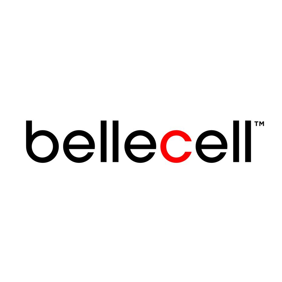 Логотип Wordmark для спа-салона Bellecell