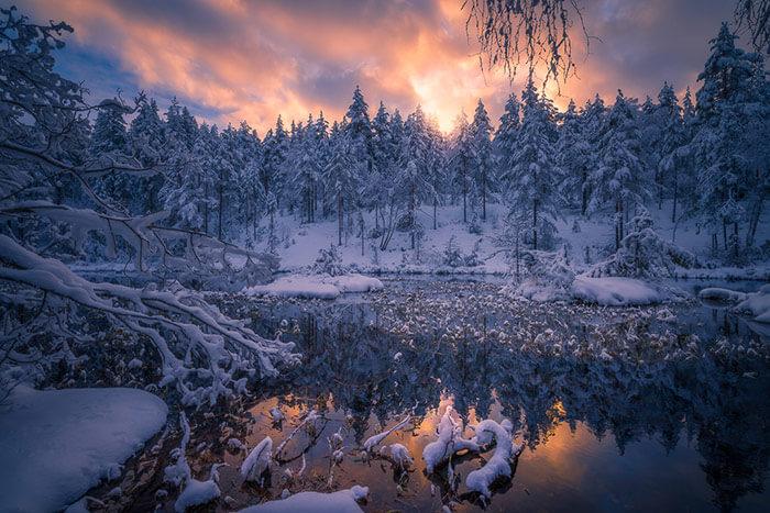 Зимний мир