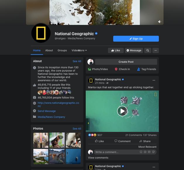 "Снимок экрана Facebook National Geographic ""width ="" 629 ""height ="" 580"