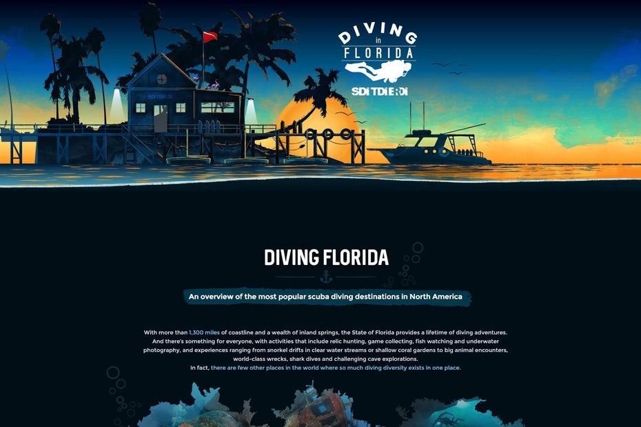 """Дизайн целевой страницы подводной тематики для бренда подводного плавания """"width ="""" 1600 """"height ="""" 1065"""