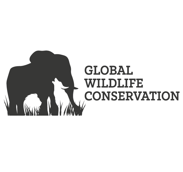 Негативный космический логотип дикой природы