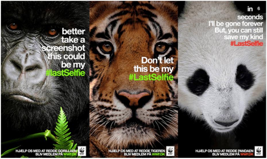 """Кампания WWF с участием гориллы, тигра и панды """"width ="""" 975 """"height ="""" 581 """"/>    <figcaption> Через WWF </figcaption></figure> <p> Как только у вас появится набросайте элементарные идеи, протестируйте их. Работайте со своей командой и людьми из целевой аудитории, чтобы определить, вызывают ли идеи, которые вы изучаете, те ответы, которые вам нужны. Когда вы планируете маркетинговую кампанию, вирусную или иную, такого рода данных — это золото. Это данные, которые вы будете использовать для уточнения и преобразования ваших идей в полностью работоспособные кампании. </p> <h2><span id="""