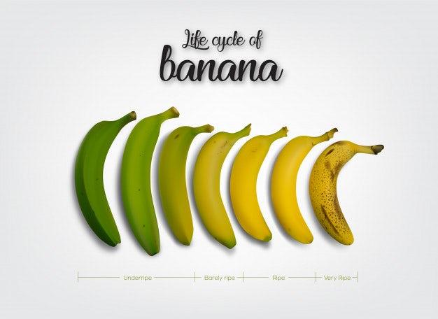 """цикл спелости банана """"width ="""" 550 """"height ="""" 400 """"/>    <figcaption> На какой стадии созревания ваша вирусная кампания? Изображение с Free Pik. </figcaption></figure> <p> ] Независимо от того, собираетесь ли вы создать свою собственную вирусную кампанию или включить уже существующую в свои маркетинговые усилия, эта информация поможет вам увидеть, свежо ли что-то, находится на пике зрелости или уже устарело. </p> <p> Есть еще более буквальный компонент: публикация сообщений в нужное время суток, в нужный день недели. Планируйте свои публикации на пиковое время суток для выбранной вами платформы, чтобы их увидела как можно более широкая аудитория. Лучшее время для публикации зависит от платформы, поэтому узнайте, какой график публикации лучше всего подходит для платформ, на которых вы работаете. <br /> <a name="""