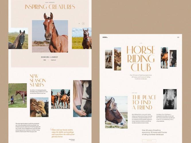 horse-riding-club-website-tubik-1024x768