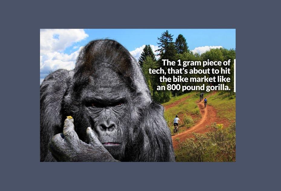 """Техническая реклама с угрюмой гориллой """"width ="""" 1412 """"height ="""" 960"""