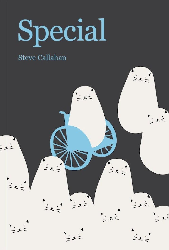 """Обложка книги с изображением кошки в инвалидном кресле """"width ="""" 714 """"height ="""" 1054 """"/>    <figcaption> Автор Carol Studio </figcaption></figure> <p> Однако доступность включает в себя слово ' доступ », и это дает ключ к ключевому различию: он описывает, существуют ли какие-либо буквальные барьеры, которые мешают кому-то что-то испытать. </p> <p> Общие примеры могут включать лестницу, препятствующую доступу для инвалидных колясок, или веб-сайт с текстом, который слишком мал для чтения. Другими словами, вопрос доступности, как правило, сосредоточен на конкретных ограничениях. С другой стороны, инклюзивный дизайн фокусируется на распознавании и устранении всех точек исключения, и для этого иногда необходимо сделать дизайн более доступным для инвалидов. </p> <p> Иногда нужно просто дать пользователю почувствовать себя желанным гостем там, где это могло быть неочевидно. </p> <h3><span id="""
